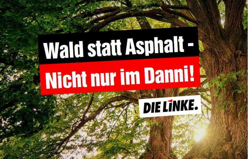 Wald statt Asphalt – Nicht nur im Danni!