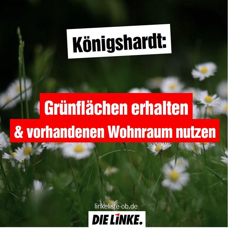 Königshardt: Grünflächen erhalten & vorhandenen Wohnraum nutzen!