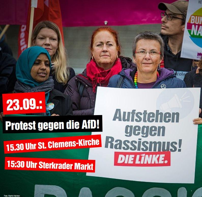 DIE LINKE unterstützt Proteste gegen die AfD